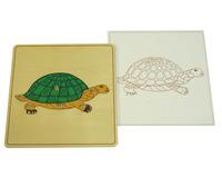 Строение черепахи (пазлы)
