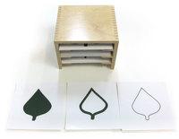 Шкафчик с карточками к ботаническому комоду