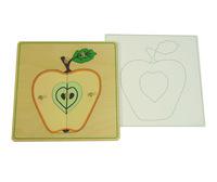 Строение яблока (пазлы)