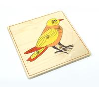Строение птицы (пазлы)